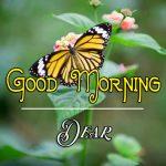 Good Morning Images Wallpaper 49