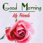 Good Morning Images Wallpaper 50