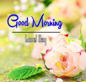 Best Good Morning Images Photo for Facebook