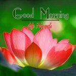 Good Morning Images Wallpaper 54