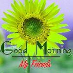 Good Morning Images Wallpaper 59