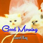 Good Morning Images Wallpaper 60