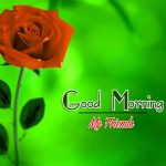 Good Morning Images Wallpaper 63