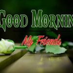Good Morning Images Wallpaper 77