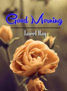 Good Morning Images Wallpaper 80
