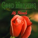 Good Morning Images Wallpaper 81