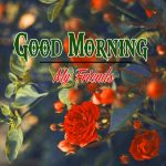 Good Morning Images Wallpaper 83
