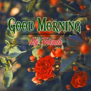 Good Morning Images Wallpaper 83