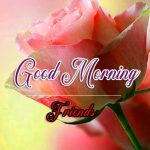 Good Morning Images Wallpaper 84
