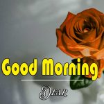 Good Morning Images Wallpaper 89