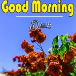 Good Morning Images Wallpaper 91