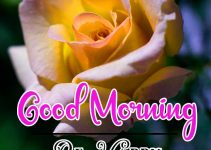 Good Morning Images Wallpaper 94