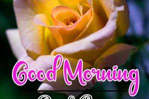 Good Morning Images Wallpaper 94