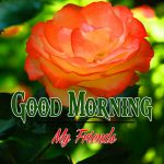 Good Morning Images Wallpaper 95