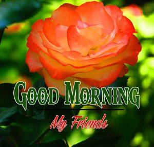 Good Morning Images Wallpaper 95