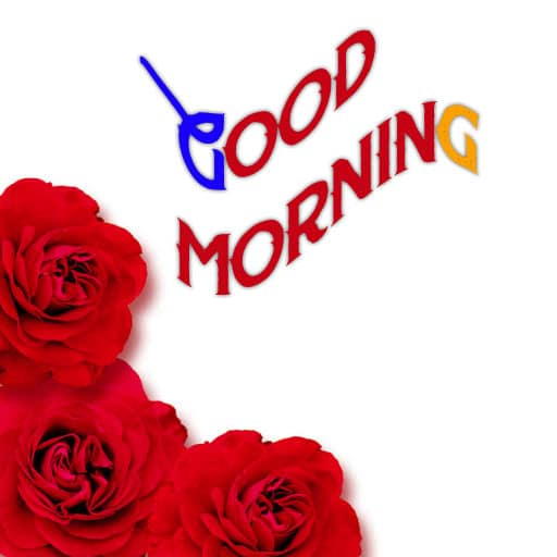 Good Morning Wishes Photo for My Friend