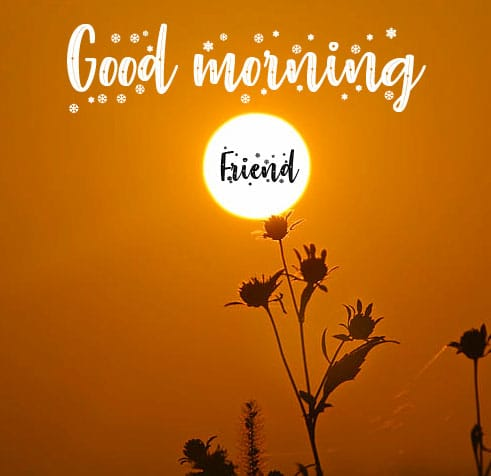 Good Morning Wishes Pics Images Download