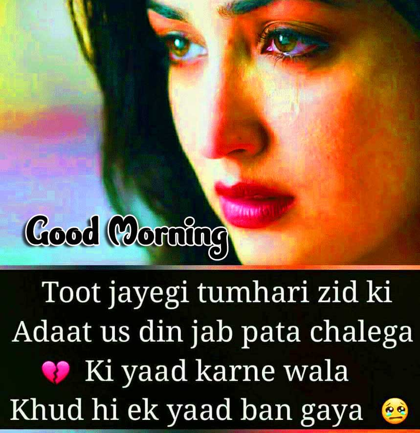 Hindi Quotes Shayari Good Morning Images 41
