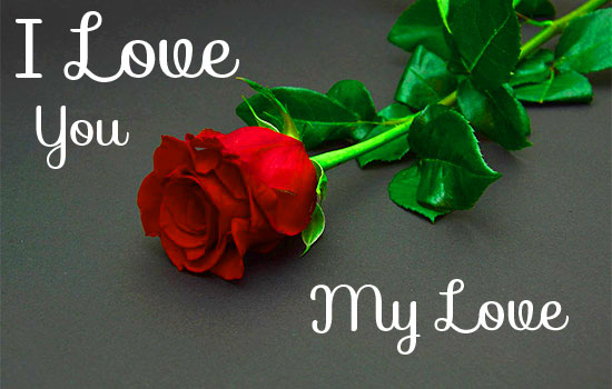 I love you Pics Photo With Rose