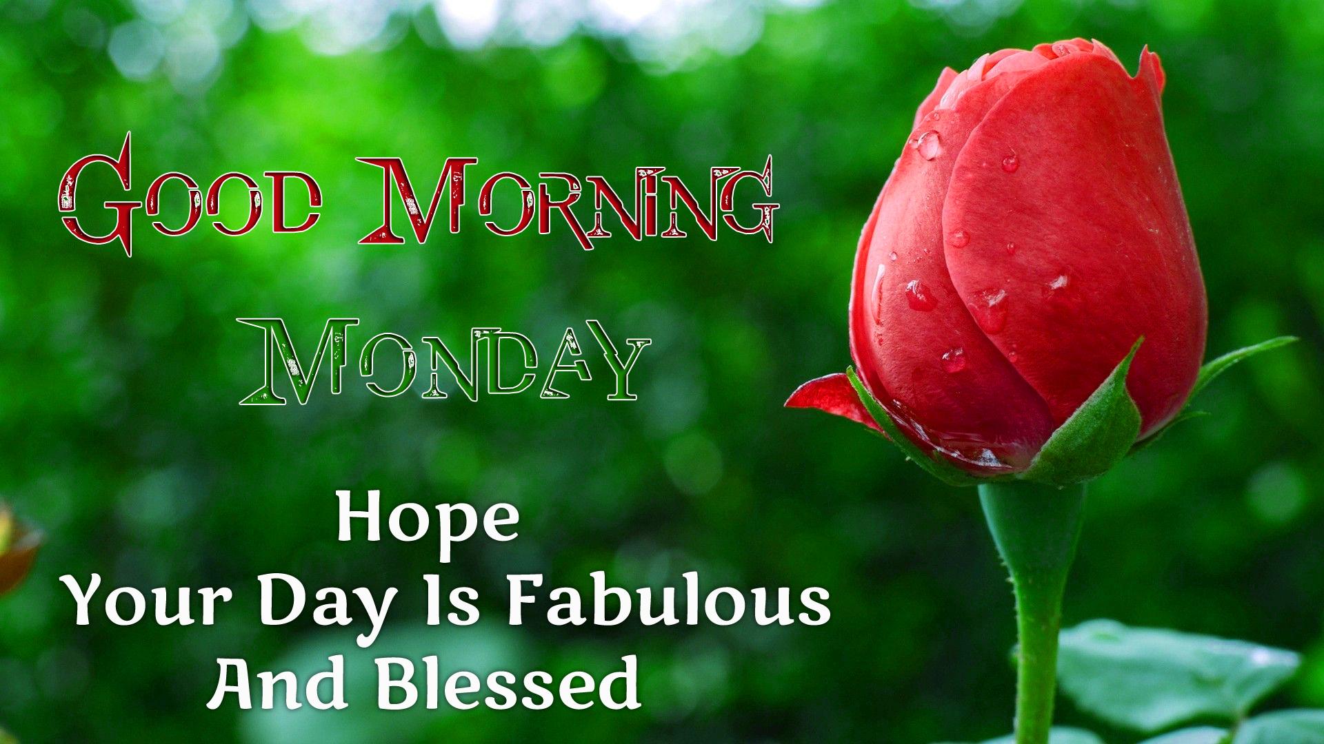 Monday Good Morning Wishes 1