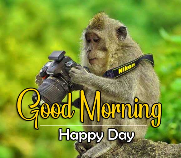 Monkey Funny Good Morning Pics Images