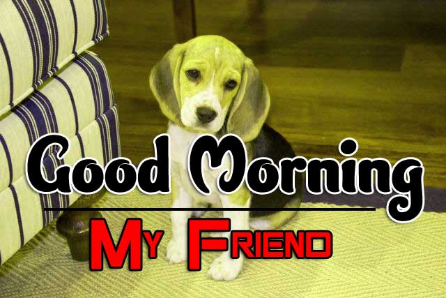 Puppy Funny Good Morning Images Pics Download