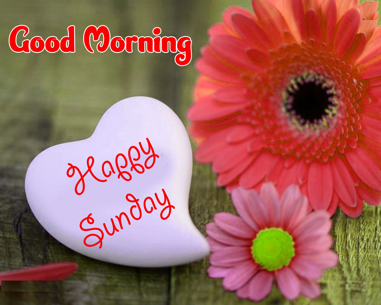 Sunday Good Morning Images Download HD