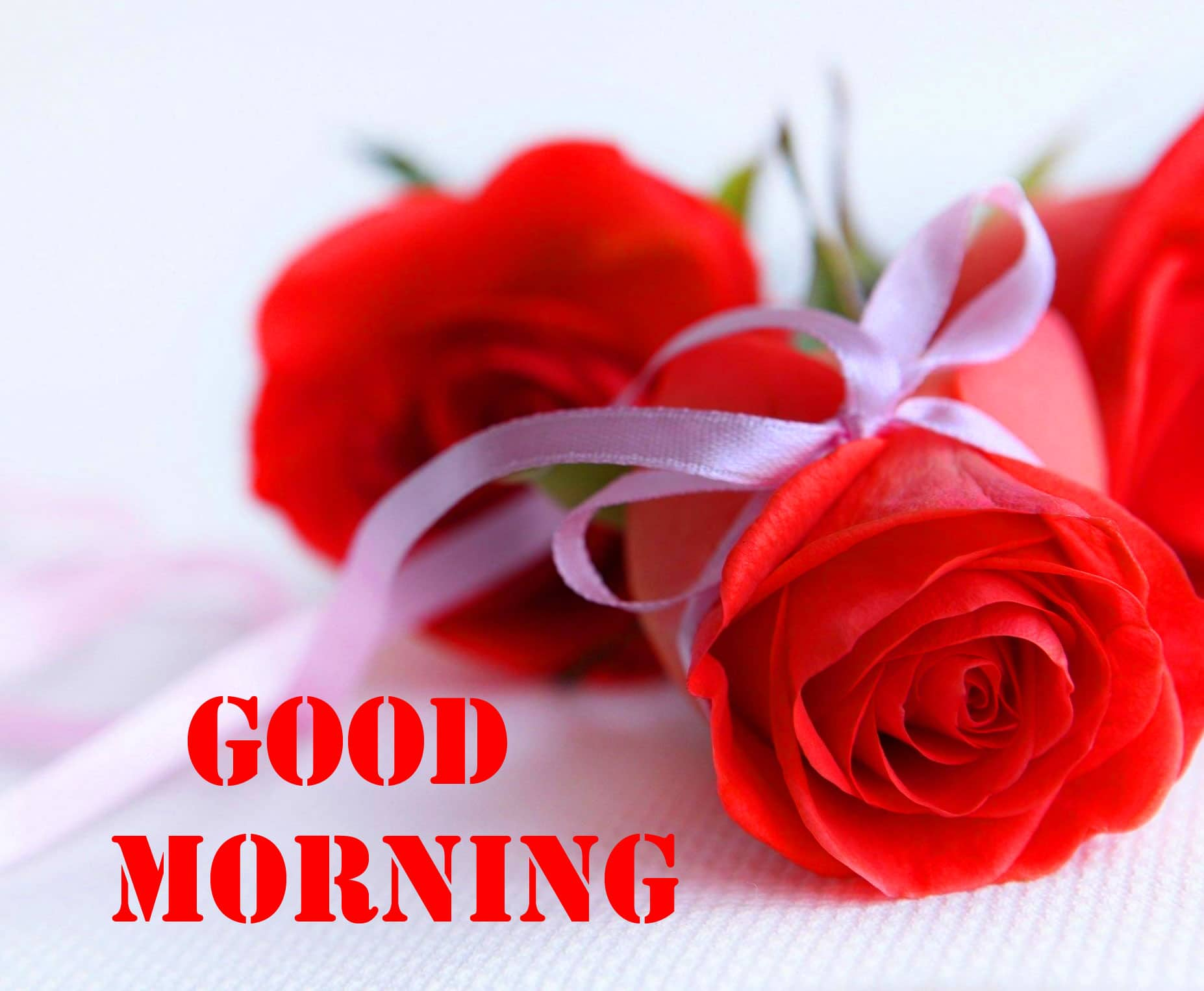 Top Free Good Morning Wishes Images