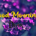 good morning images for flower 15