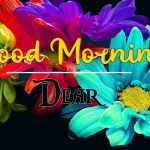 good morning images for flower 16