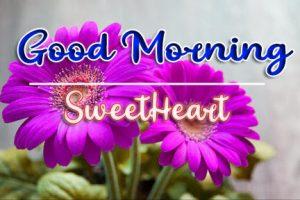good morning images for flower 92