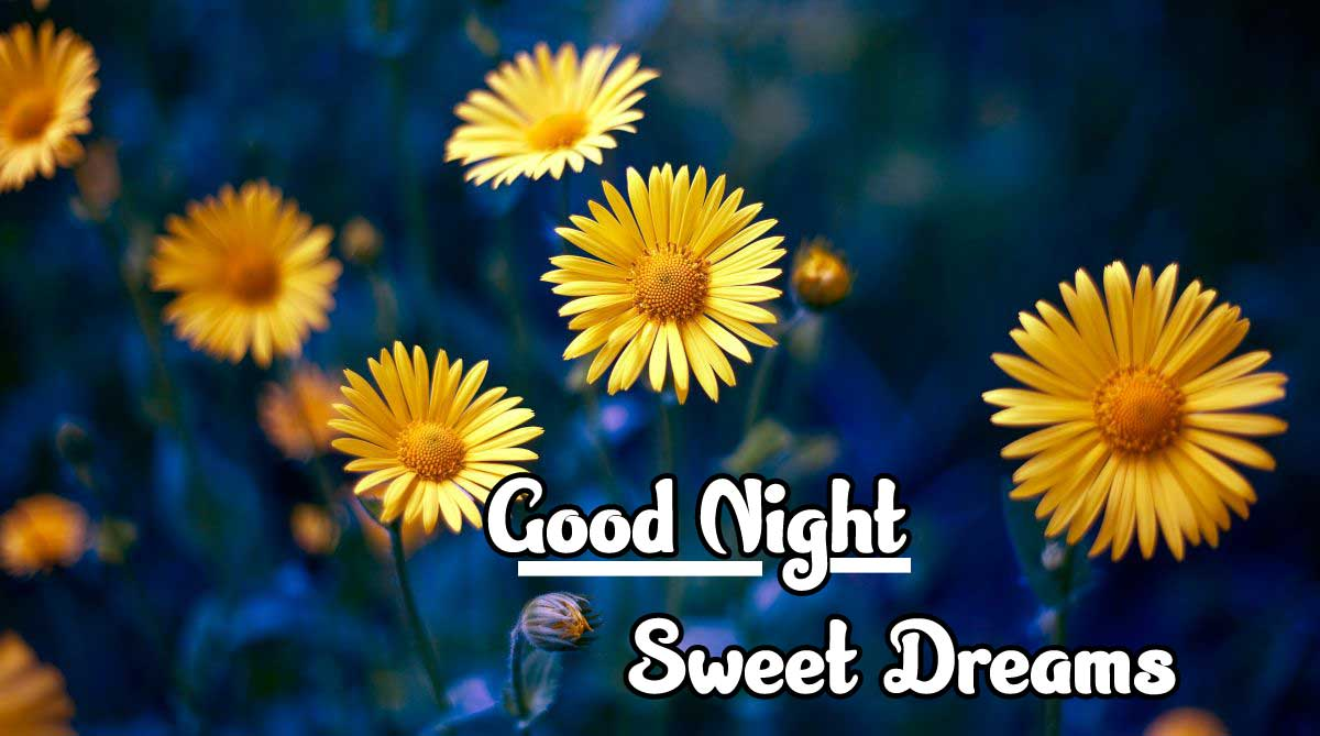 good night sweet dreams images for friends 32
