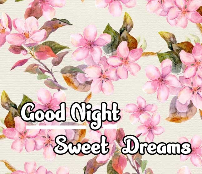 good night sweet dreams images for friends 34