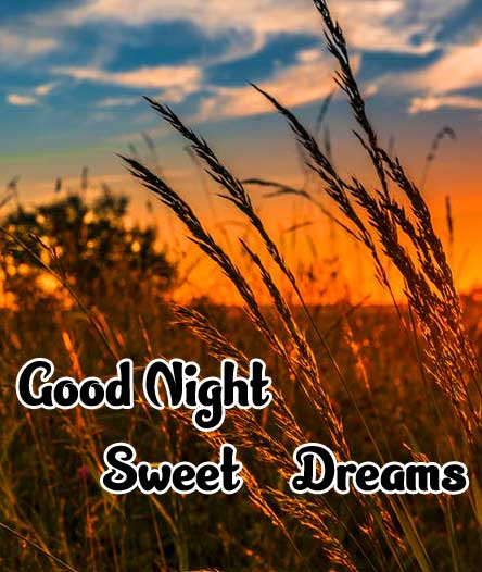 good night sweet dreams images for friends 50