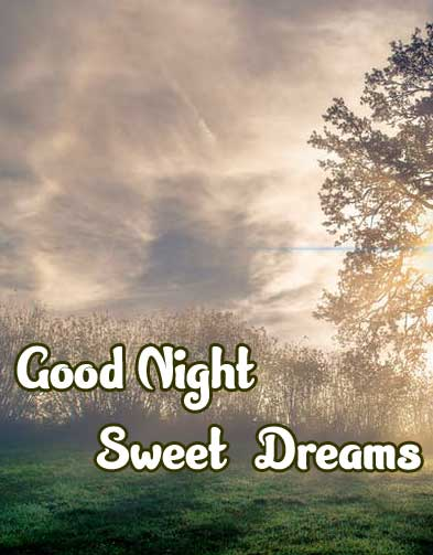 good night sweet dreams images for friends 52