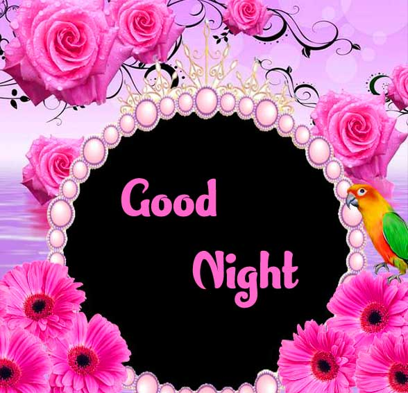 good night sweet dreams images for friends 71