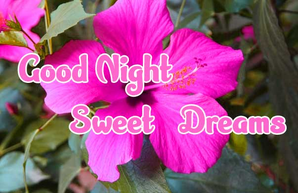 good night sweet dreams images for friends 73
