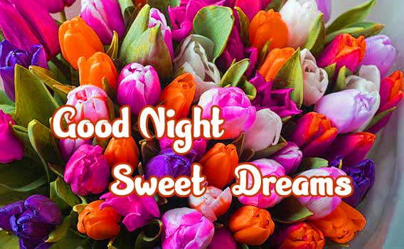 good night sweet dreams images for friends 81