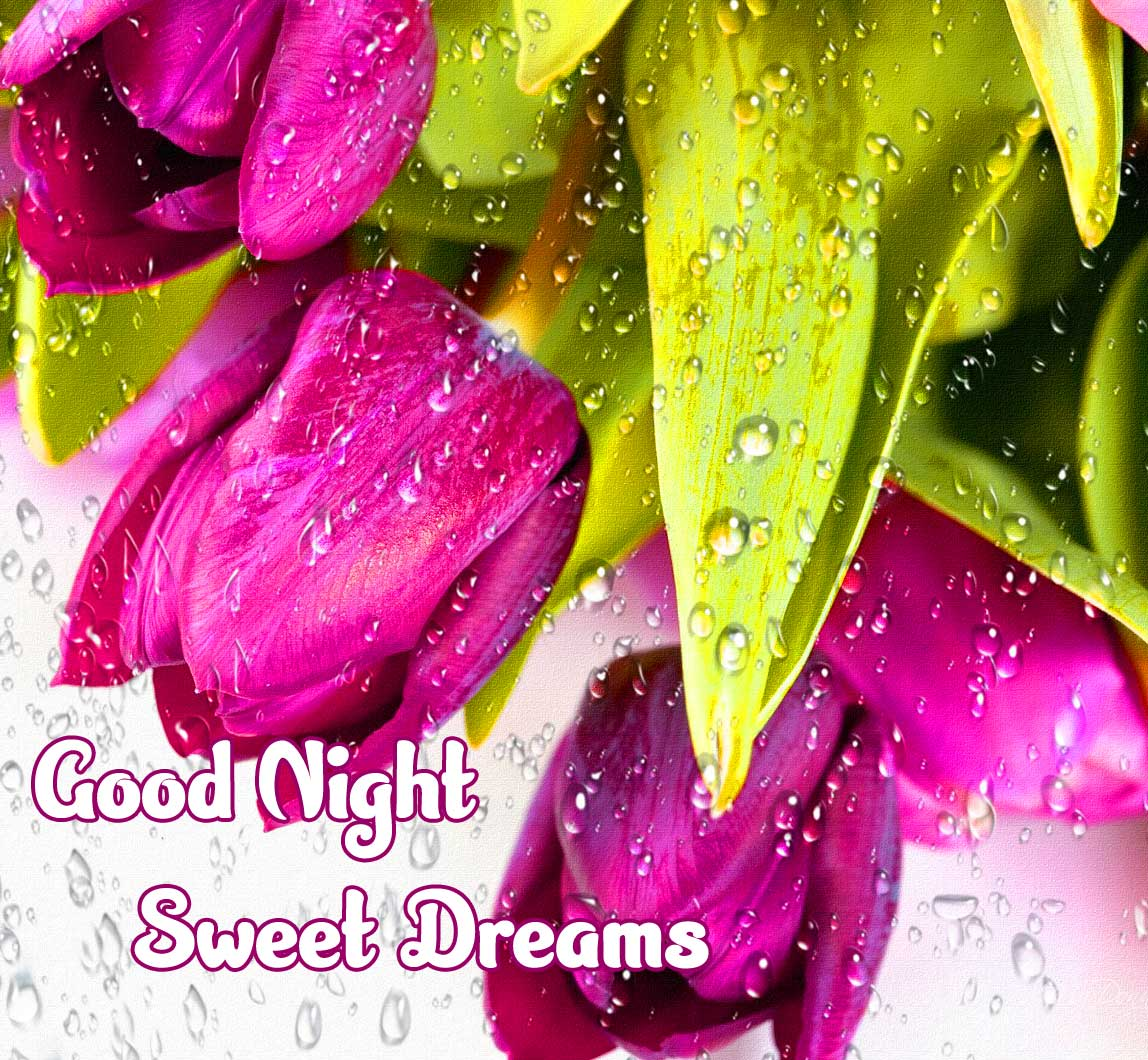 good night sweet dreams images for friends 83