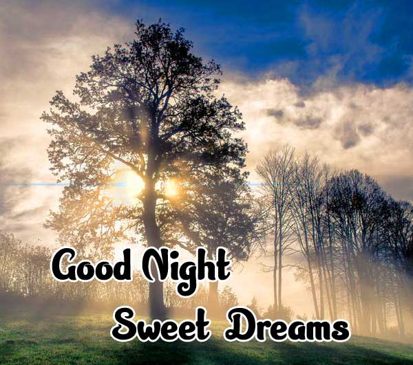 good night sweet dreams images for friends 84