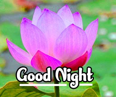 good night sweet dreams images for friends 99