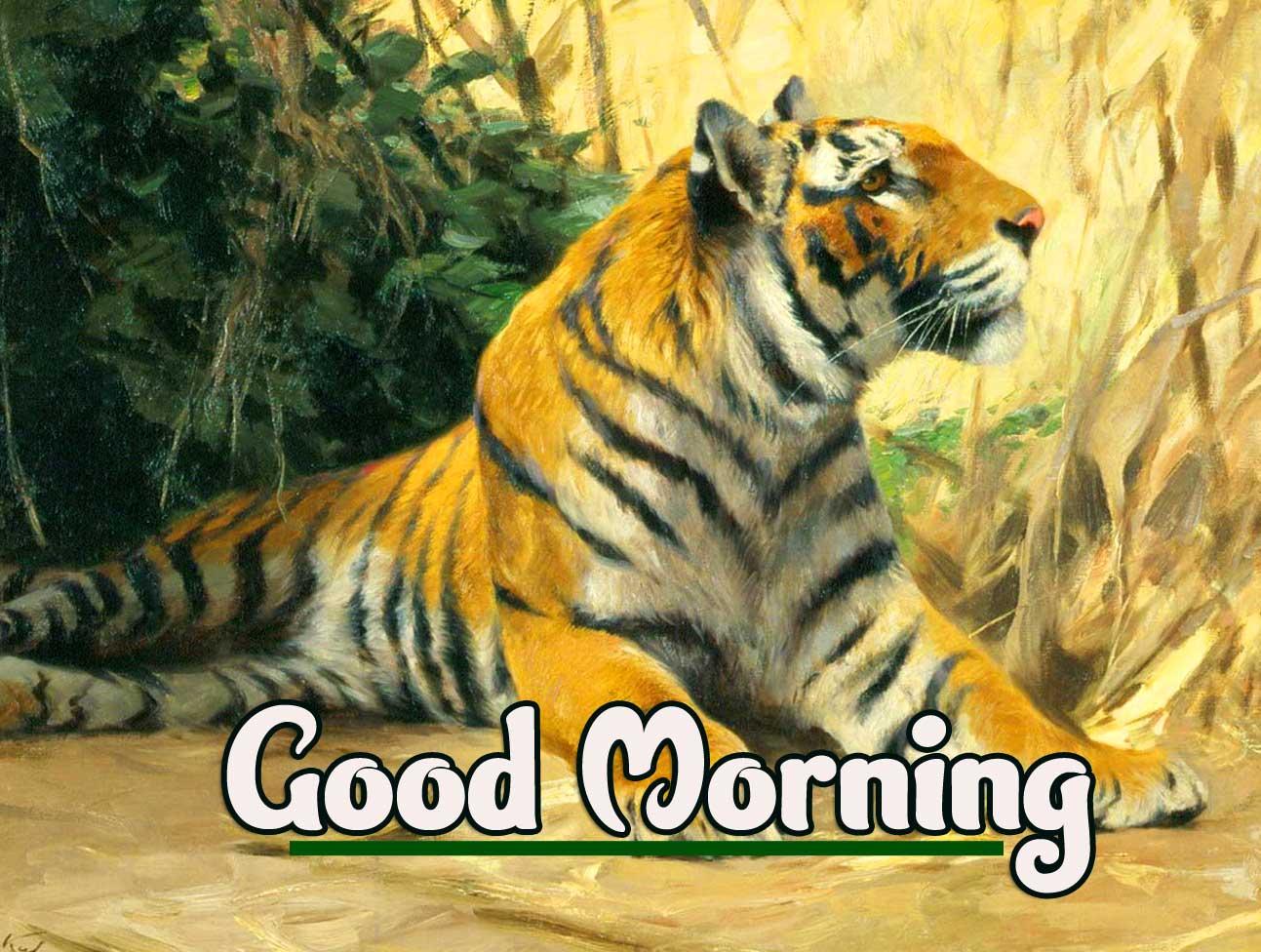 Animal Bird Lion Good Morning Wishes photo pics Download