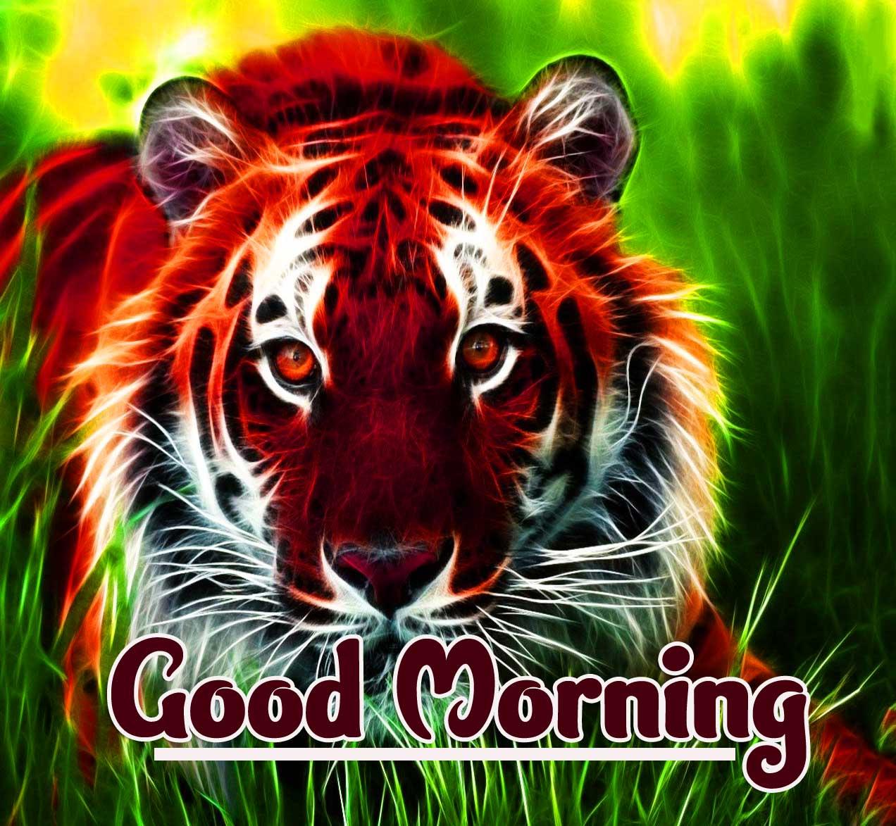 Animal Bird Lion Good Morning Wishes Wallpaper Free Download