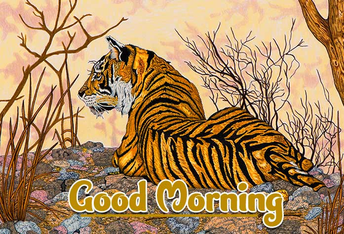 Animal Bird Lion Good Morning Wishes Pictures Free Download