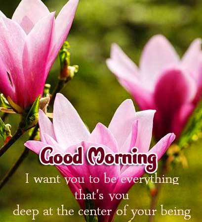 Beautiful Good Morning Images Download 2