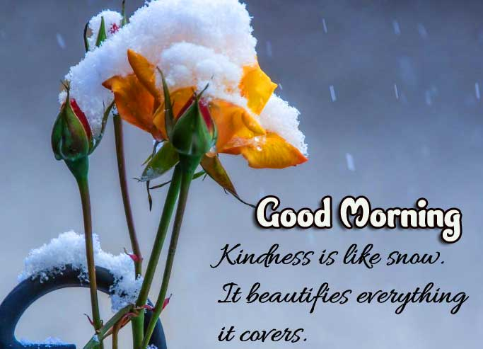 Beautiful Good Morning Images Download 42