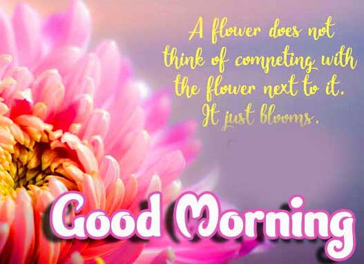 Beautiful Good Morning Images Download 45