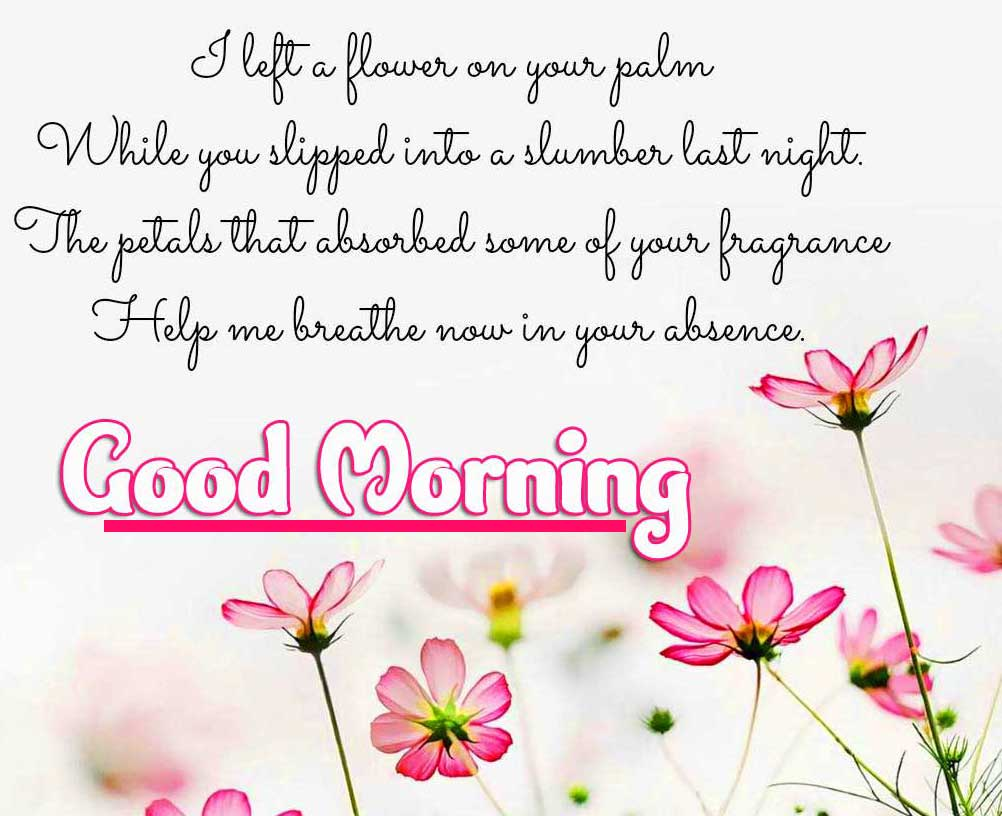 Beautiful Good Morning Images Download 51