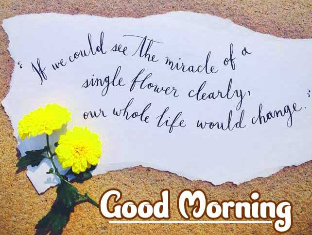 Beautiful Good Morning Images Download 58