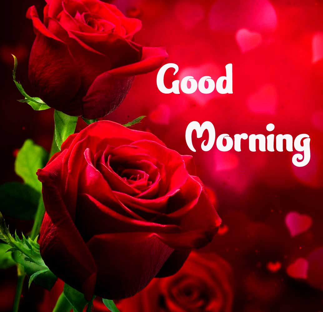 Best Good Morning Images Wallpaper for Facebook